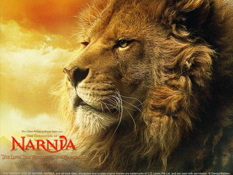 http://blog.chandrahasa.com/wp-content/uploads/2006/07/08-narnia-wallpaper-800x600-lion.jpg